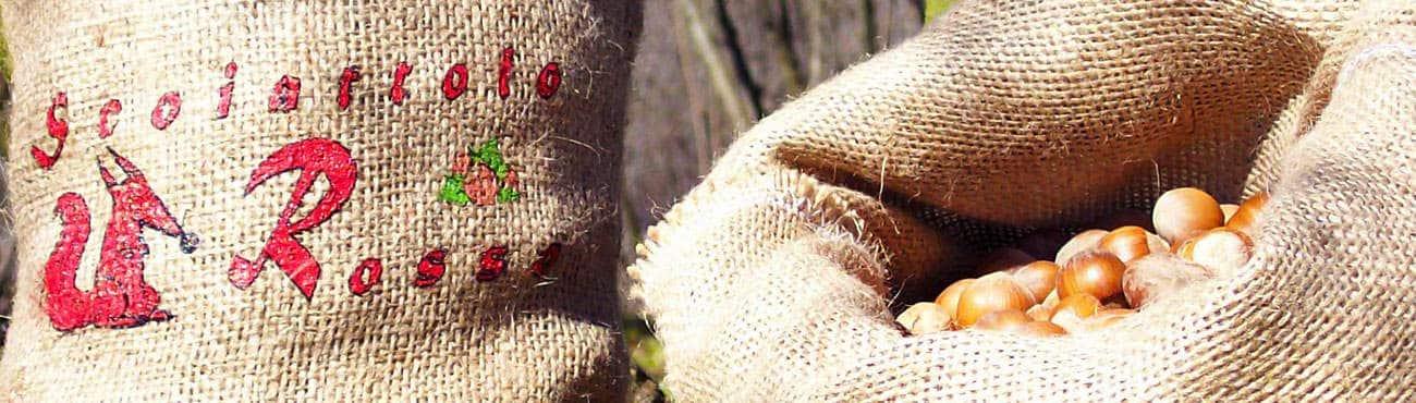 nocciole piemonte in guscio azienda agricola scoiattolo rosso produzione vendita nocciole igp miele