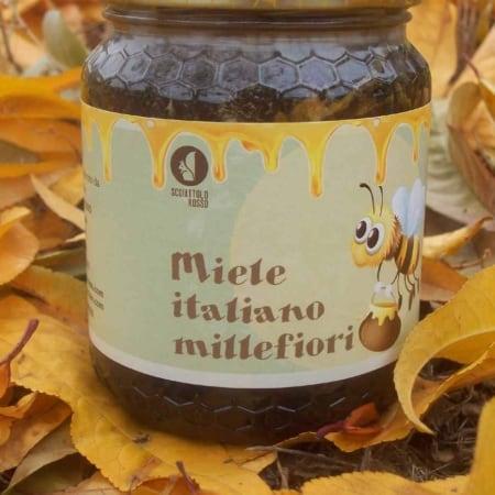 miele italiano millefiori dell'azienda agricola scoiattolo rosso vendita nocciole piemonte online